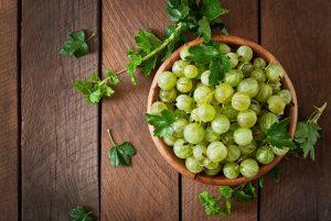 ovocné kríky